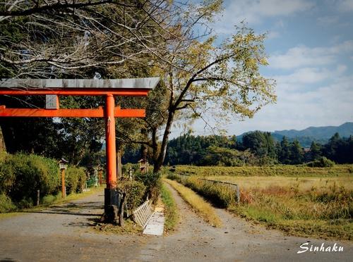 EM533608_Sinhaku.jpg