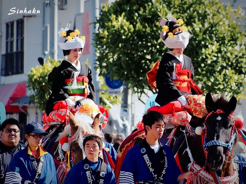 EM573449_Sinhaku.jpg